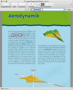 PDF-Datei in Skim geöffnet